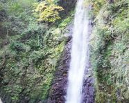 yoro-falls / 養老の滝